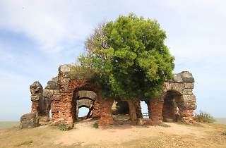 Doric House