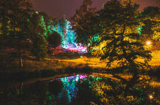 Wilderness Festival (Sebastian Barros)