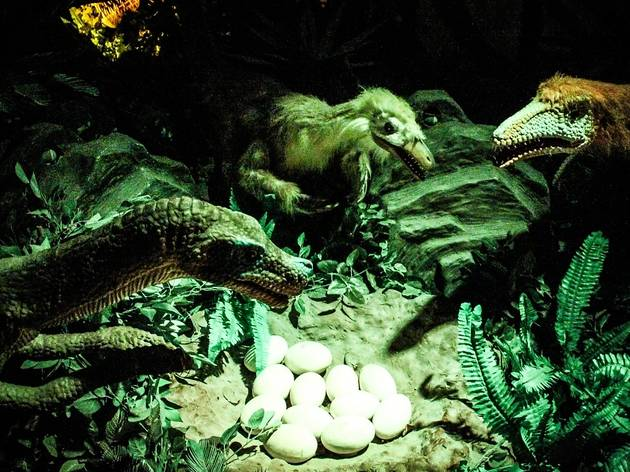 Mother's Day Dinosaur Hunting at Dinoscovery by Dinosaurs Live!