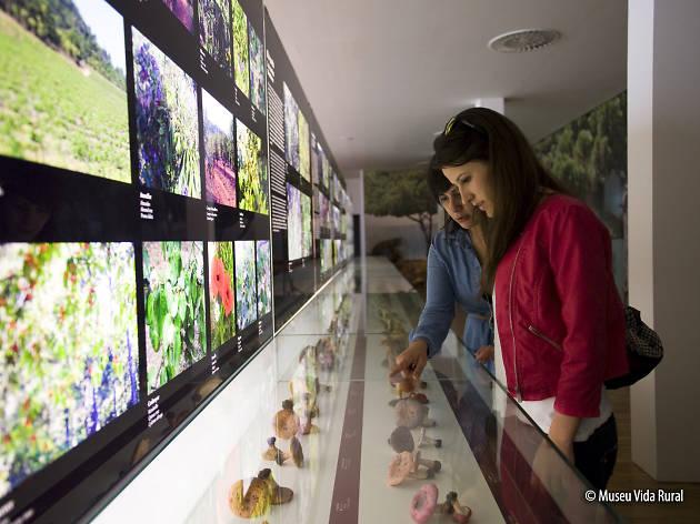 Museu de la Vida Rural