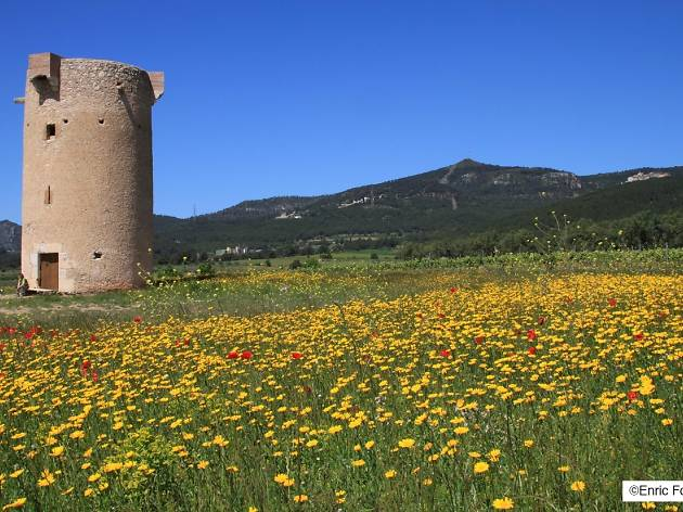 Torre Mixarda