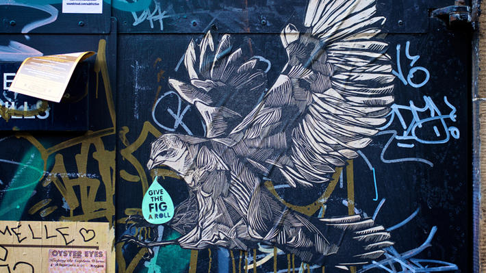 edinburgh street art hawk