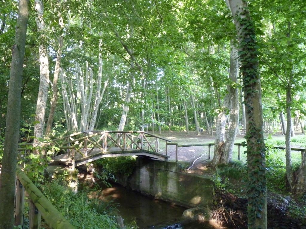 Arboretum Santa Maria de Palautordera