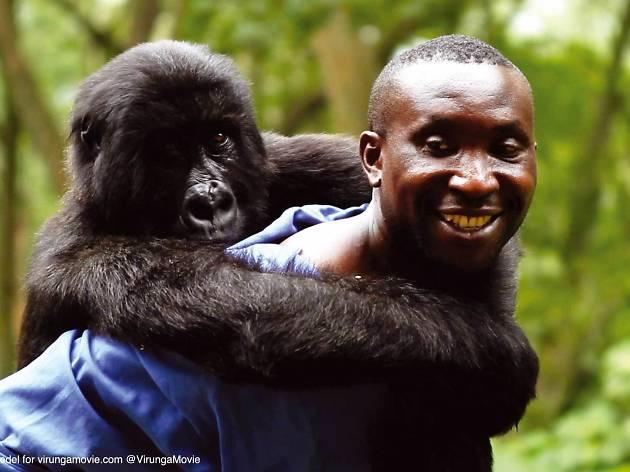 DocsBarcelona 2015: Virunga