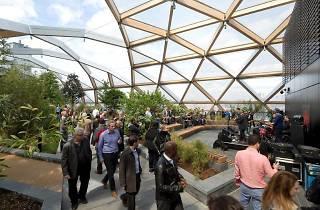 Crossrail Place Gardens: Bloom