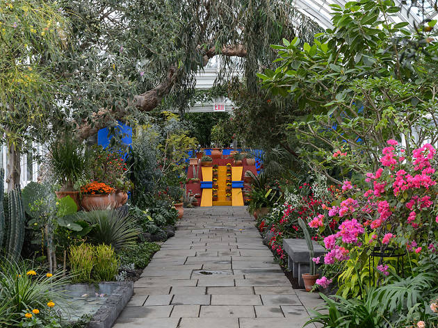 See photos of the Botanical Garden's extravagant Frida Kahlo exhibition