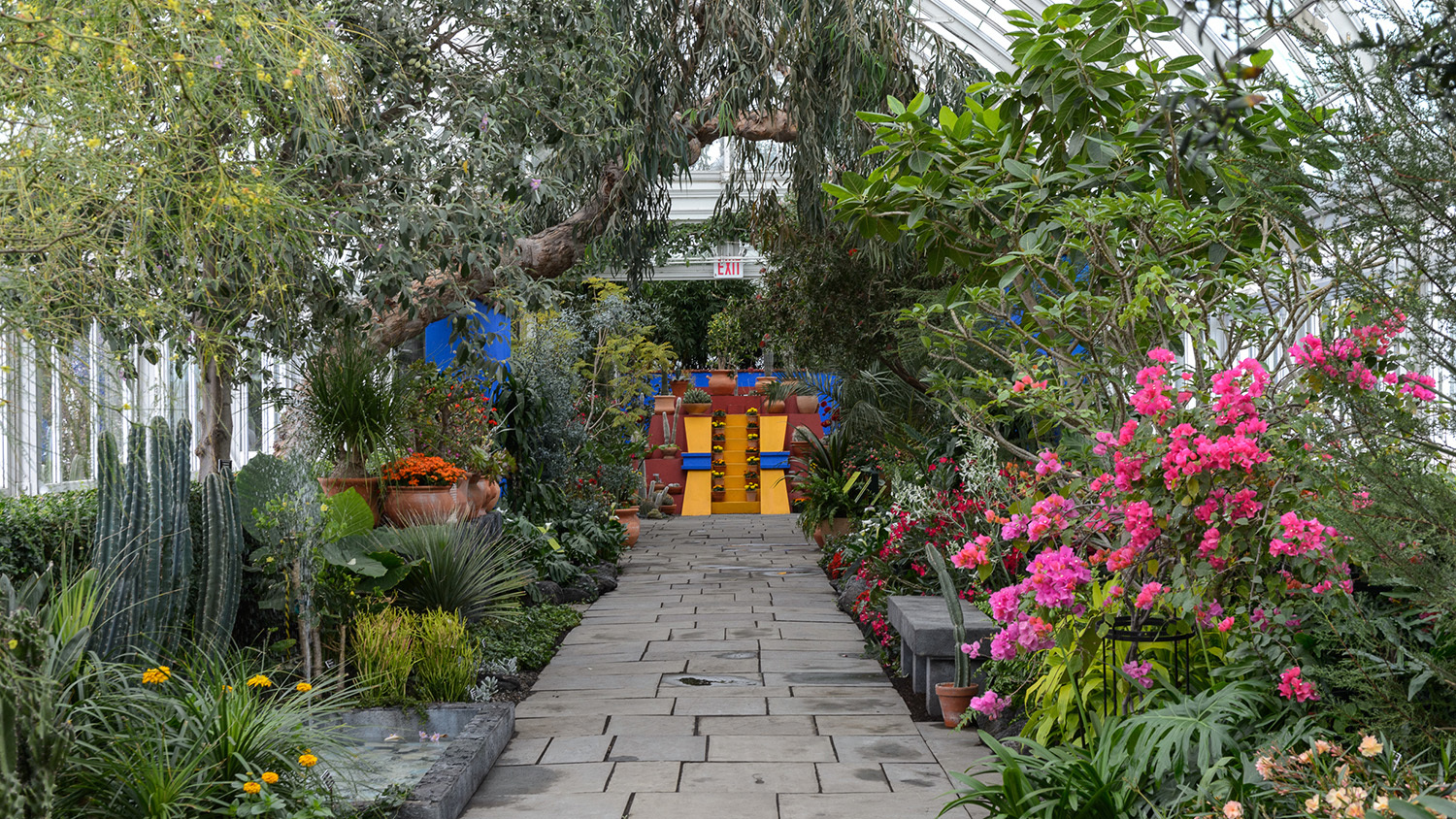 See Photos Of The Botanical Gardenu0027s Extravagant Frida Kahlo Exhibition