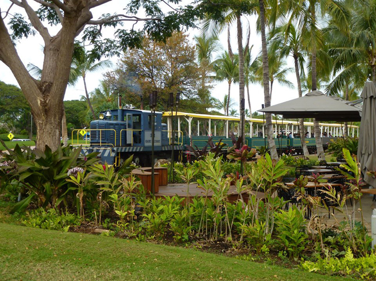 The Hawaiian Railway Society