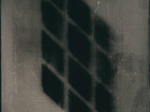 Ben Cauchi, Black Light