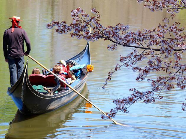 Gondola rides in Central Park