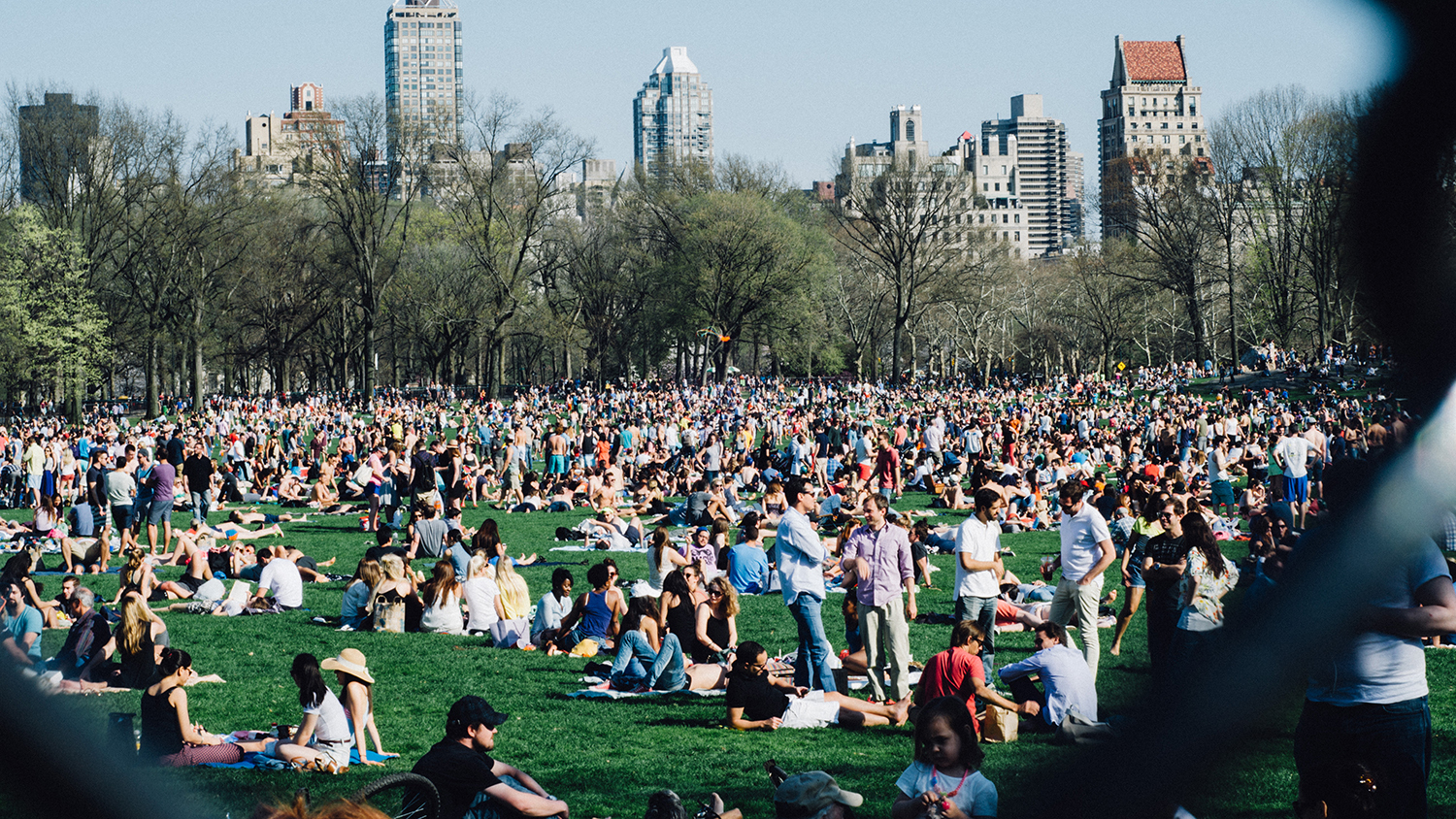 The three best things to do in new york today for Things to do new york today