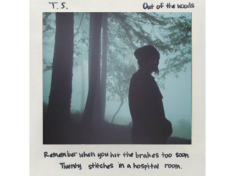 'Out of the Woods' (2014)