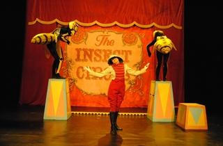 The Insect Circus