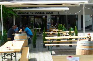 Blackbird Social Club