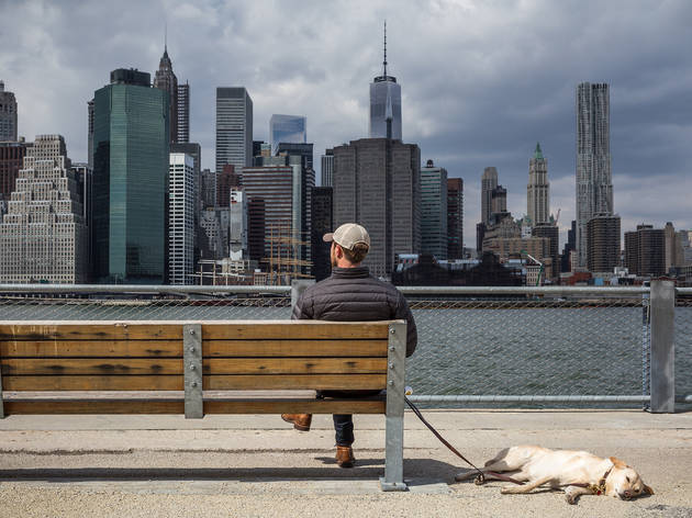 The three best FREE things to do in New York today