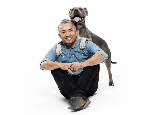 Cesar Millan Live: Love Your Dogs Tour 2015