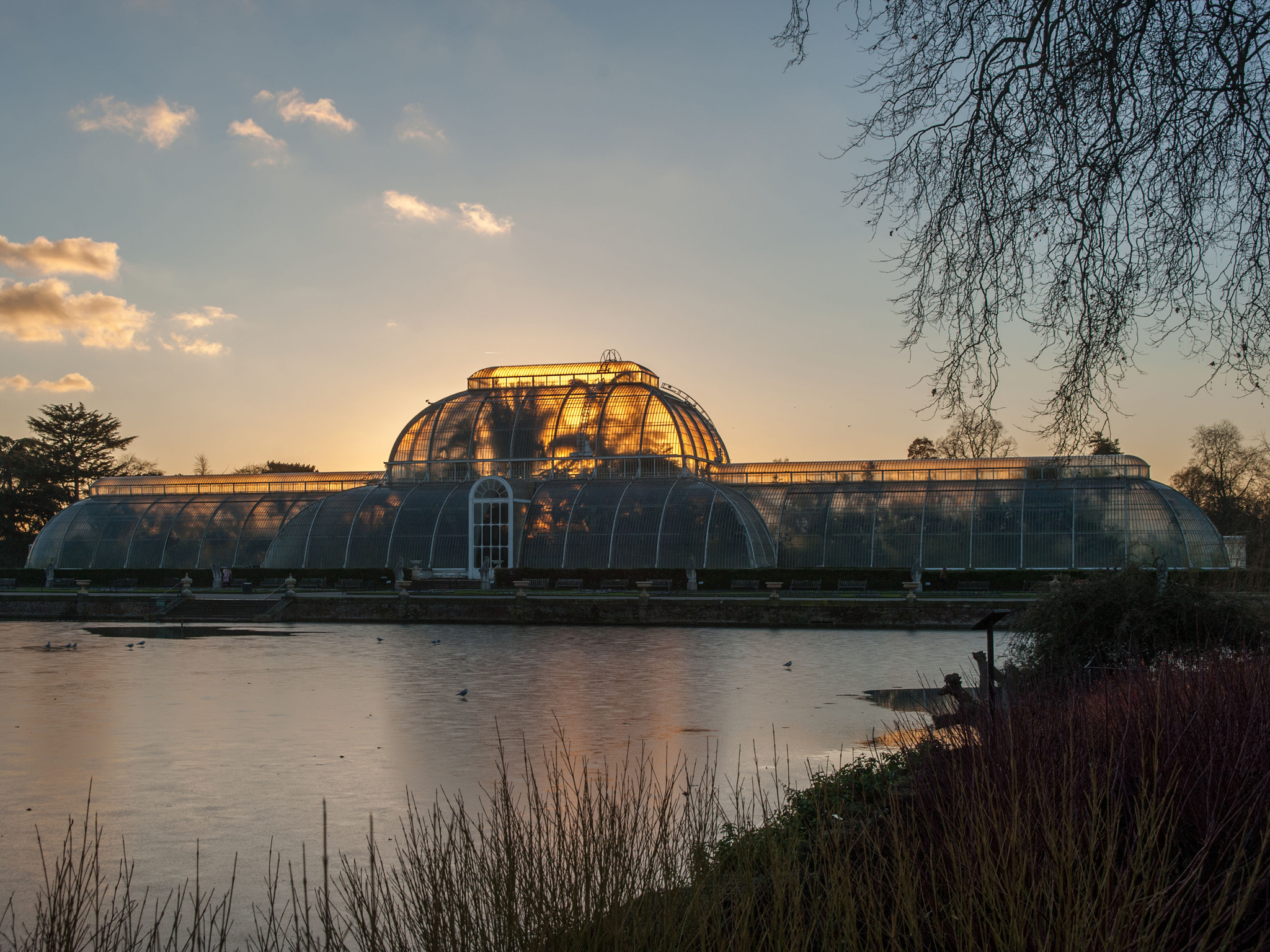 Win one of 50 pairs of tickets to Kew Lates