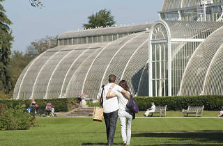 Kew Lates competition
