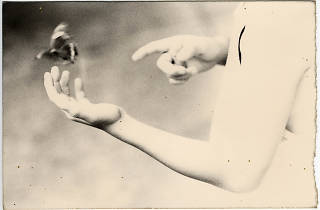 DOCfield>15: Masao Yamamoto. Small Things in Silence