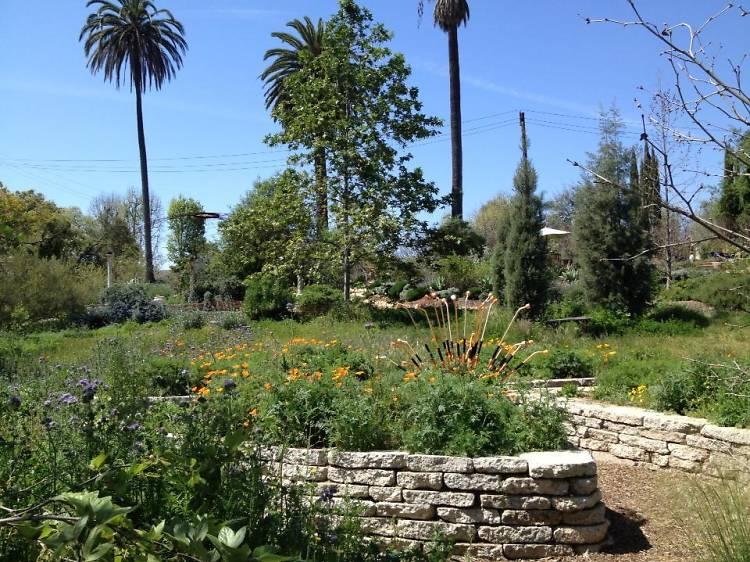 Arlington Garden