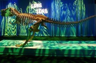 ('Dinosaur' / ©  Dean West)