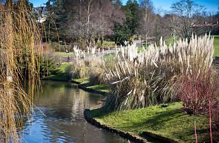 Golders Hill Park, Hampstead Heath