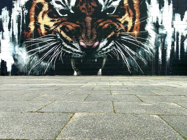 A tour of Glasgow's best street art