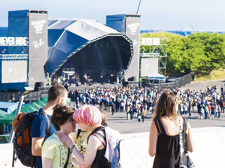 Asistir a todos los festivales musicales
