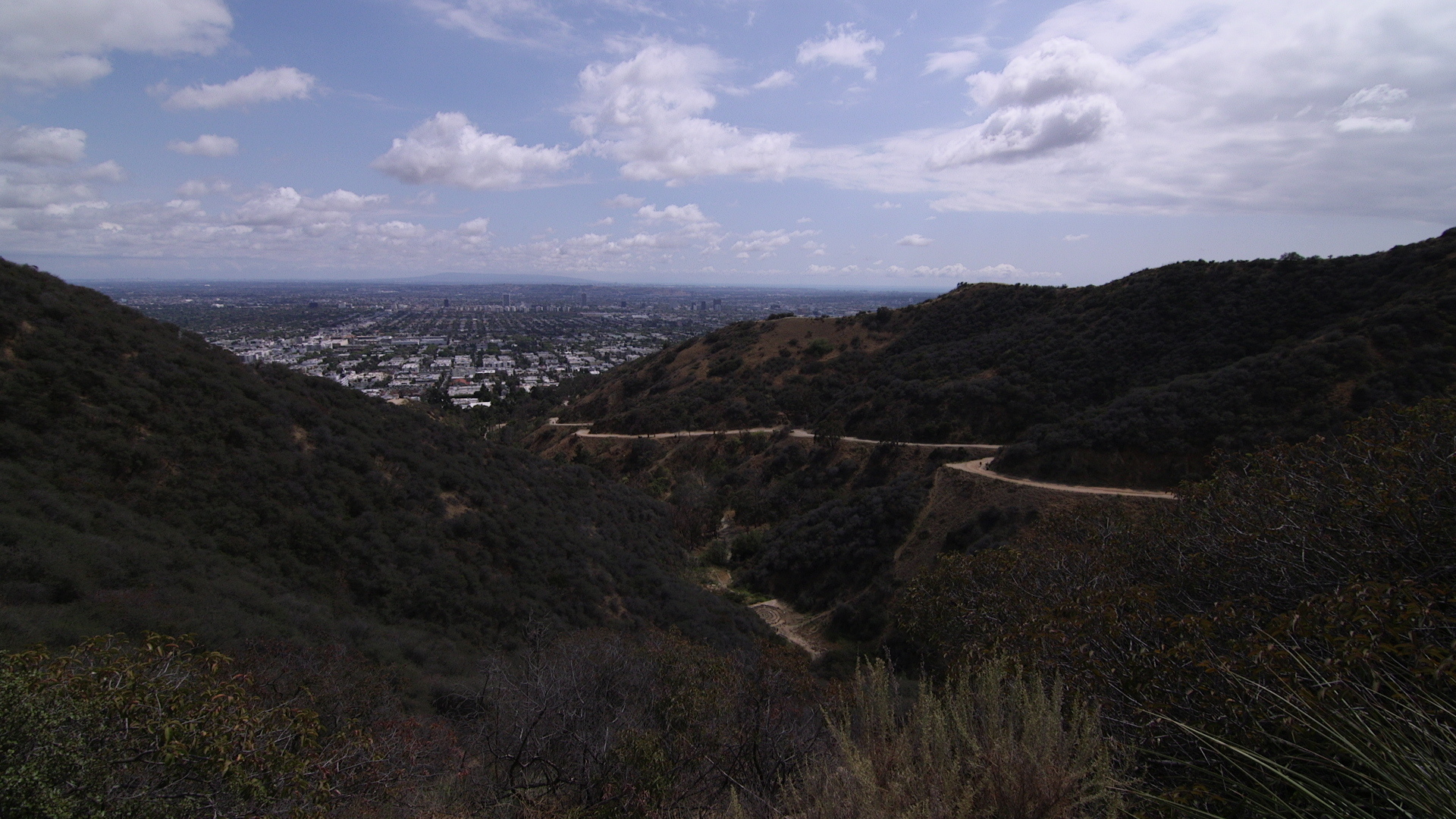 A hiking trail in the Runyon Canyon