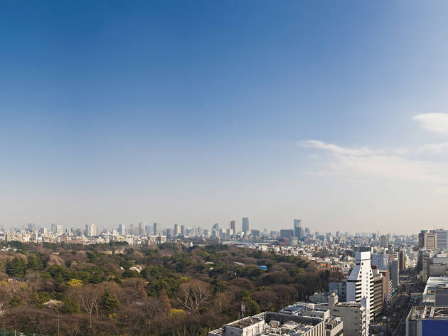Shinjuku Gyoen and NTT Docomo Tower | Time Out Tokyo