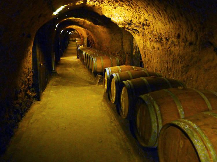 Drink on fine wine a kilometre above sea level