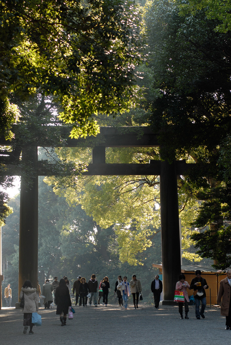 Power up at Meiji Shrine...