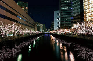 Meguro-gawa Minna no Illumination