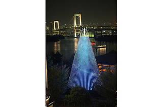 15th Daiba Memorial Tree