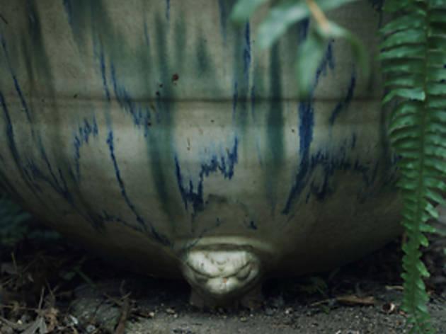 石井孝典「Nio ヤドリの石」