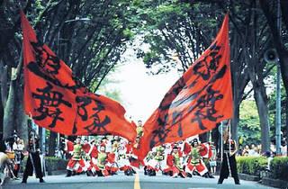 Fukuro Matsuri & Tokyo Yosakoi