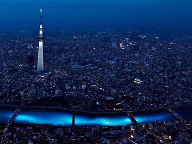 東京ホタル