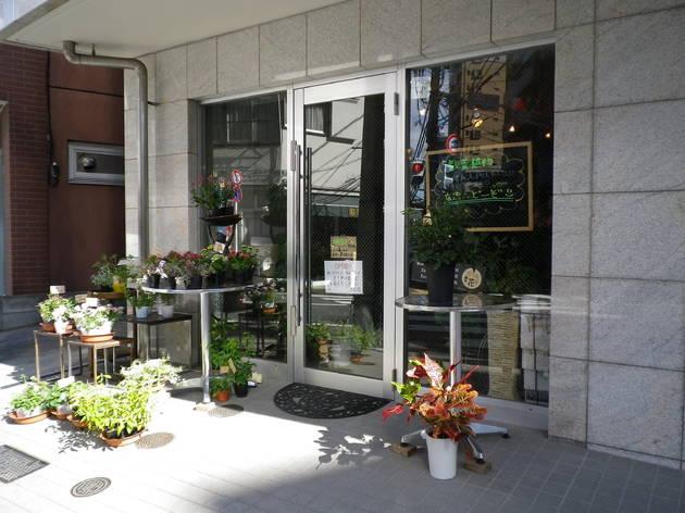 恵比寿の花屋