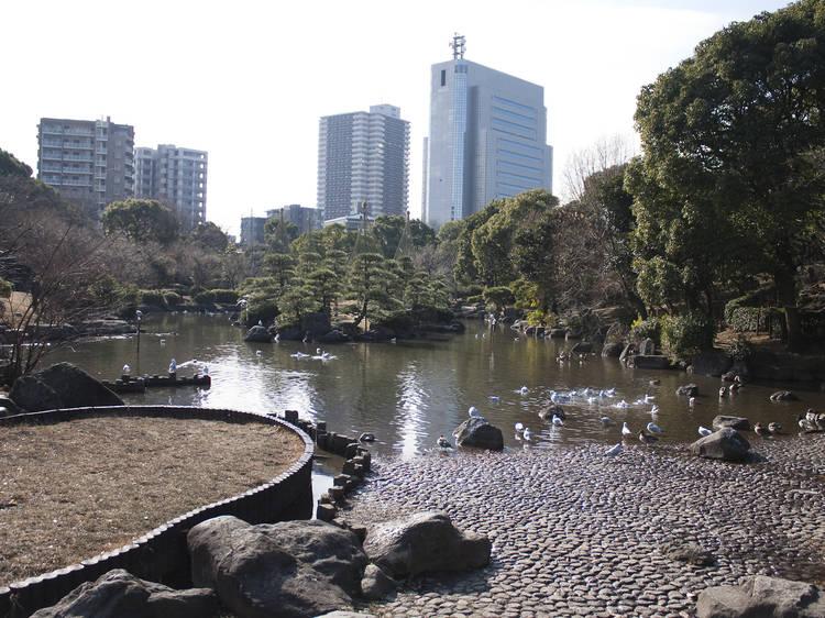 川沿いで桜を眺める