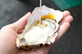 Saito Fisheries Tsukiji