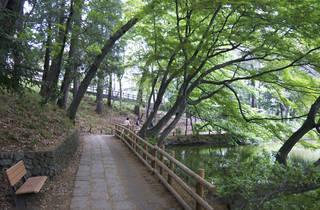 Zenpukuji Park