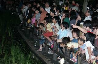 第50回 福生ほたる祭り(2015)