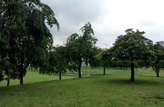 Ogunohara Park