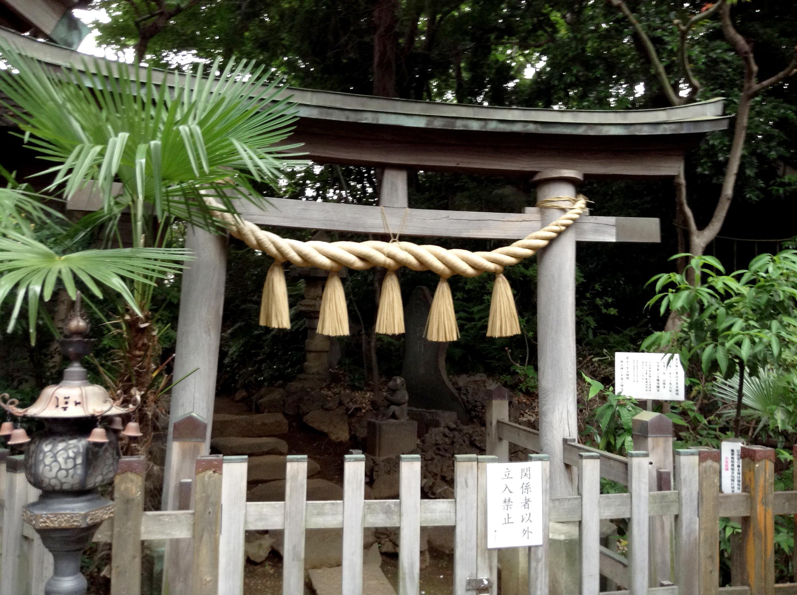 Climb a miniature Mount Fuji at Asama Shrine