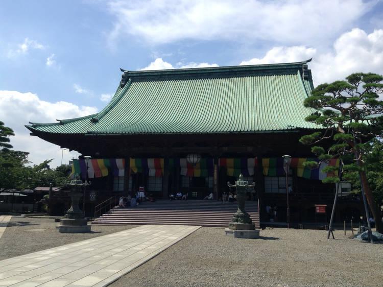 Visit past greats at Gokokuji
