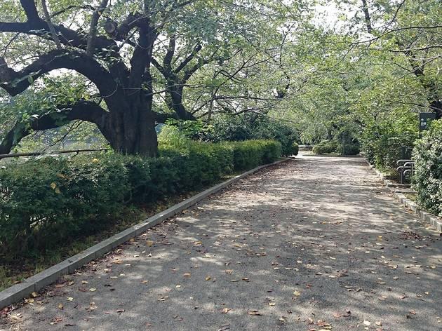 Choshu Bakumatsu Walk