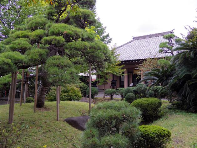 Discover a lush hideout at Raifukuji