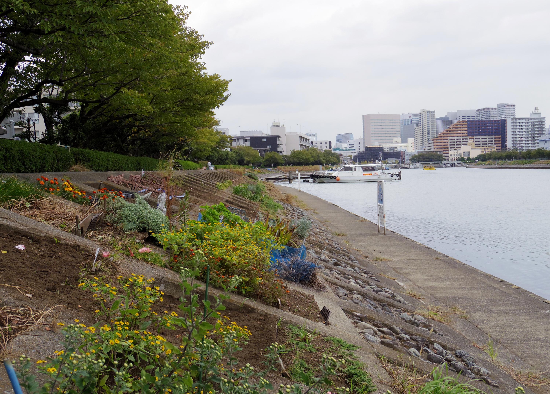 Stroll along the Hana-Kaido waterfront