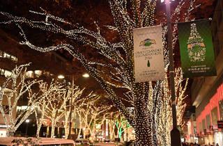 Omotesando Illumination 2014