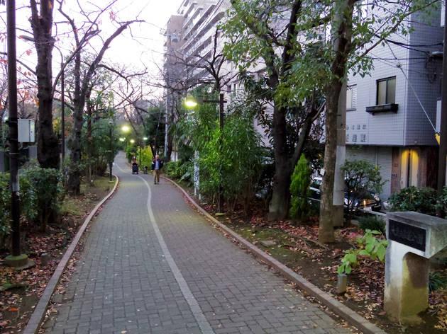 Ojima Ryokudo Park/Kameido Ryokudo Park